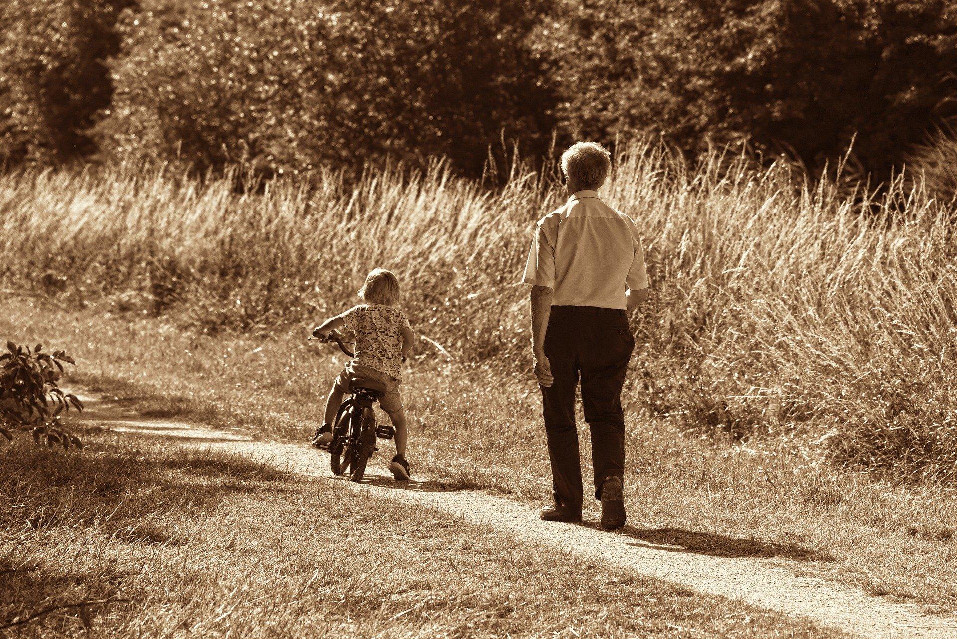 Derecho de visitas abuelos nietos abogados